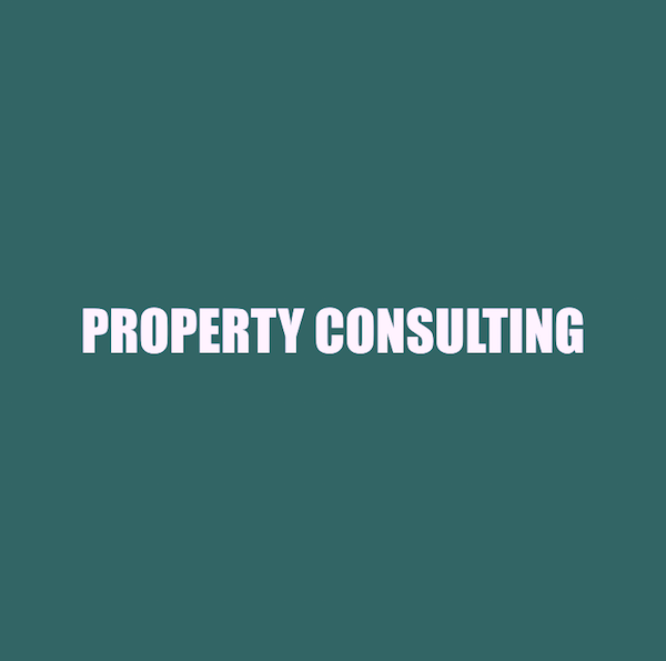 PROPERTY CONSULTING